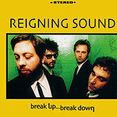 Break Up, Break Down by Reigning Sound