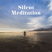 Silent Meditation Time: 2019 New Age Yoga & Deep Relaxation Music, Sacral Chakras Balancing, Inner Energy Increase de Reiki