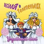 Весілля в телепеньках (українські весільні пісні) by Various Artists