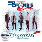 Divorcio by Grupo Bryndis