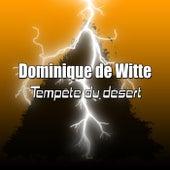 Tempête du désert de Dominique de Witte