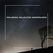 Wellbeing Relaxation Mindfulness - Piano Chill Out Soundtrack von Relaxing Chill Out Music