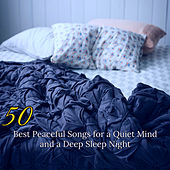50 Best Peaceful Songs for a Quiet Mind and a Deep Sleep Night – Soothing Sounds for Sleeping de Various Artists