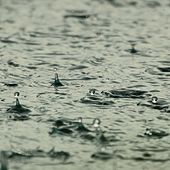 20 Blissful, Loopable, Gentle Rain Sounds by S.P.A