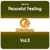 Peaceful Feeling, Vol.3 de Various Artists