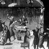 Kstiçais by The Farm