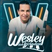 Saudades Dela de Wesley dos Teclados