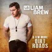A Few More Dirt Roads de Liam Brew
