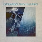 Entspannende Regen Und Donner by Various Artists