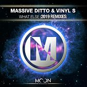 What Else (2019 Remixes) von Vinyl S Massive Ditto