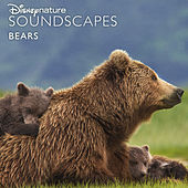 Disneynature Soundscapes: Bears by Disneynature Soundscapes