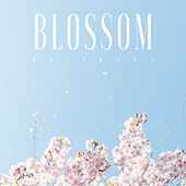 Blossom by Ikson