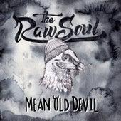 Mean Old Devil by Raw Soul