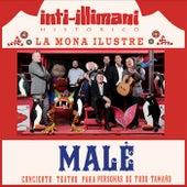 Malé Concierto Teatro para Personas de Todo Tamaño (Soundtrack) de Inti Illimani Histórico