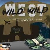 Wild Wild West by Jay Payd