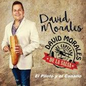 El Piloto Y El Canario von David Morales