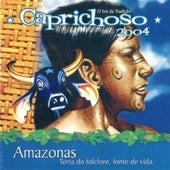 Amazonas Terra do Folclore, Fonte de Vida von Boi Bumbá Caprichoso