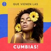 Que vienen las cumbias! de Various Artists