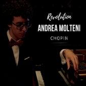 Revolution de Andrea Molteni