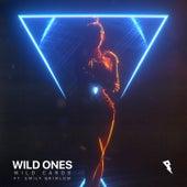 Wild Ones by Wild Cards