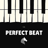 Perfect Beat - EP von Various Artists