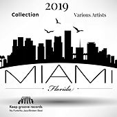 Miami 2019 Collection von Various