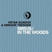 Sirius / In The Woods von Petar Dundov