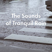 The Sounds of Tranquil Rain by Various Artists