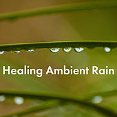 Healing Ambient Rain by Various Artists