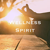 Wellness Spirit by Various Artists