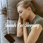 Sounds for Sleeping by Various Artists