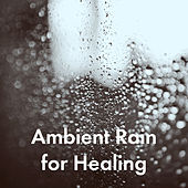 Ambient Rain for Healing de Various Artists