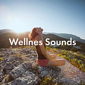 Wellnes Sounds de Various Artists
