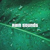 Rain Sounds by Various Artists
