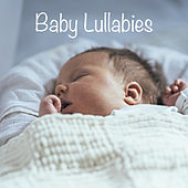 Baby Lullabies by Various Artists