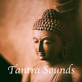 Tantra Sounds by Various Artists