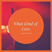 What Kind of Love Is This de Various Artists