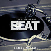 The Birth of the Beat by Sandy Nelson