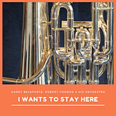 I Wants to Stay Here de Various Artists