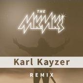Freedom (Karl Kayzer Remix) von The Makemakes