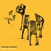 What Makes You by The Elephant Sessions