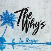 La Razón de The Whys