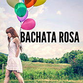 Bachata Rosa de Various Artists