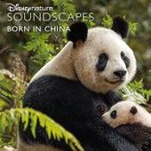 Disneynature Soundscapes: Born in China de Disneynature Soundscapes