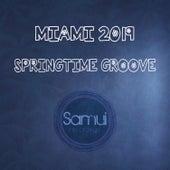 Miami Springtime Groove 2019 by Various
