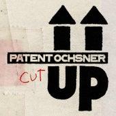 Dr Zug (fahrt us dr Stadt) by Patent Ochsner
