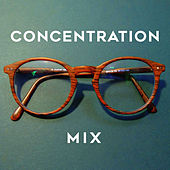 Concentration Mix de Various Artists