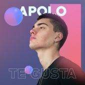 Te Gusta by Apolo
