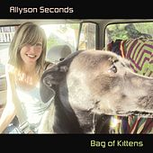 Bag of Kittens by Allyson Seconds
