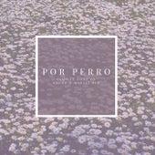 Por Perro by Camille Gonz